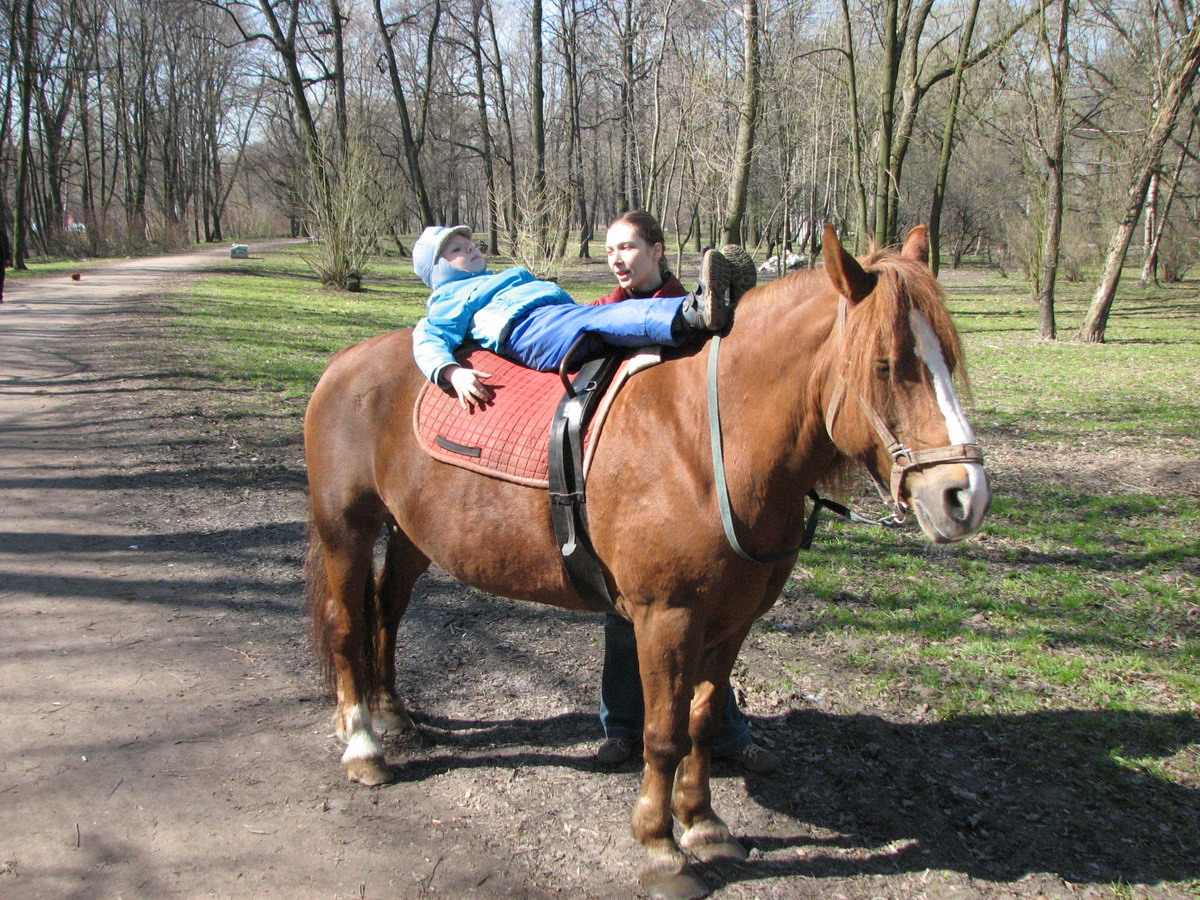 Можно кататься на лошади при сколиозе